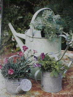 Watering cans, lovely**