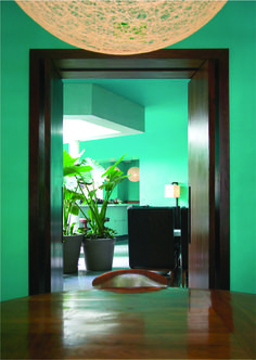 Green and black, Hotel Condesa df : Hilda - Mexican interiors