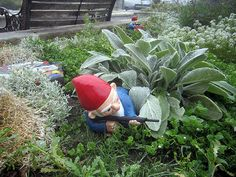 Combat Garden Gnome in prone position with M16 by thorssoli, $57.00