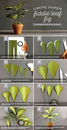 Crepe Paper Fiddle Leaf Fig Tutorial | Lia Griffith