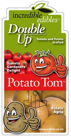 DoubleUP™ - Potato Tom™ - Incredible Edibles® ... Bringing Your Garden Alive With Fruit