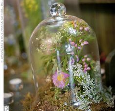 Glass bell jars covered arrangements of wildflowers and moss, providing unique focal points for the tables. Terrarium Centerpiece, Terrarium Wedding, Glass Terrarium, Centerpiece Ideas, Terrariums, Table Centerpieces, Glass Bell Jar, Bell Jars, Glass Domes