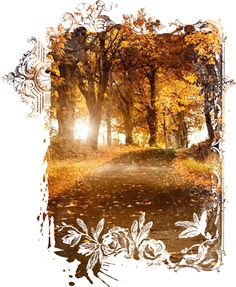Autumn Backgrounds #1 (05).png - Download at 4shared