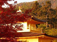 Kinkakuji Temple, Kyoto