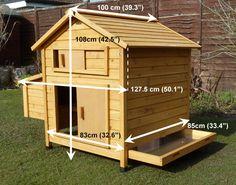 Hen House Measurement