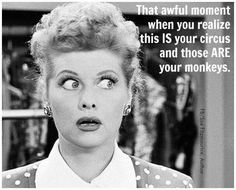 That awful moment when you realize this IS your circus and those ARE your monkeys.  Lucille Ball, I Love Lucy!