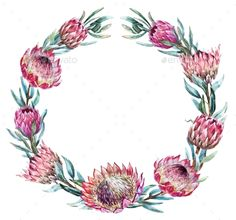 Buy Watercolor Tropical Protea Wreath by Zenina on GraphicRiver. Beautiful vector image with nice watercolor tropical protea wreath Protea Art, Flor Protea, Protea Flower, Australian Flowers, Wreath Drawing, Wreath Watercolor, Watercolour Flowers, Creative Flyers, Flower Quotes