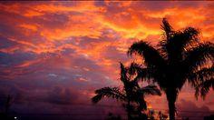Yamba sunset #roadtrip #australia #freedom #luftmensch #luftmenschren #followyourdreams #journey #travel #picoftheday#instagood #photography #blog