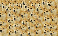 Doge Wallpaper Photo For Desktop Wallpaper « Long Wallpapers Dog Wallpaper, Animal Wallpaper, Pattern Wallpaper, Funny Doge, Doge Meme, Photo Pattern, Dog Pattern, Geeks, Doge Dog