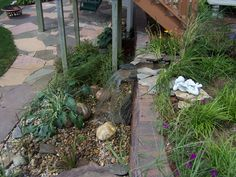 Pondless Waterfall:  I'd like to incorporate this as a cooling station for the kids in the summer.  Low maintenance because there is no pond you do not have to run the pump 24/7.  I'm thinking: small sledding hill on one side for winter, water feature on the other for summer.  OOOOH!  FUN!