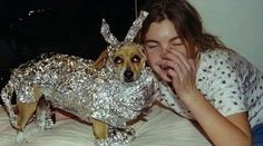 Whatever is happening here. | The 49 Most WTF Pictures Of People Posing With Animals