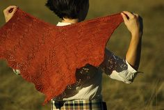 The Antonia Shawl