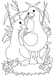 38 Best Goose coloring pages and embroidery images