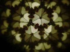 This photo shows the view from inside a kaleidoscope. The shapes and colors are reflected in a symmetrical pattern by the mirrors inside the kaleidoscope.