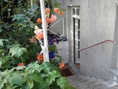 Munich apt Stairs down the the apartment's door - 2 bd apartment $548 for 3 days incl $94 owner fees and $41 booking fee