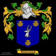 My family crest. The knight's head represents that the Mulhollands are warriors, the deer head means they are great hunters. And the three gold shells means they took on three crusades to the Holy Land and their own expense.