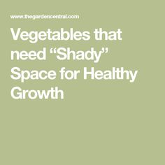 "Vegetables that need ""Shady"" Space for Healthy Growth"