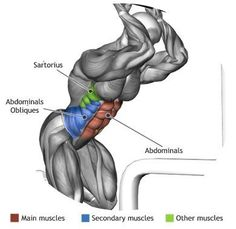 ABDOMINALS - CABLE CRUNCH