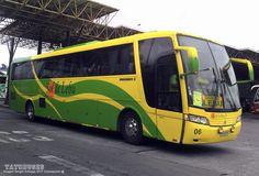 Buses Sol de Lebu