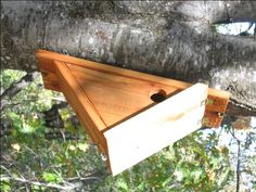 Side Hole Nest Box