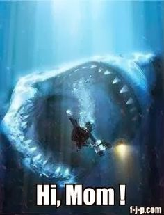 Funny Shark Diver Photograph #sharkweek Fort Worth Pediatric Dentistry | #FortWorth | #TX | http://www.fwpediatricdentistry.com/