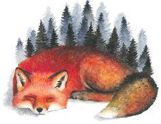 Sleeping Fox by colorsofthewild