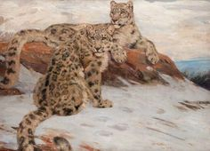 Snow Leopards, 1912, by William Walls (1860-1942)