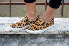 slip on leopardate - leopard slip on  steve madden - #sarenza