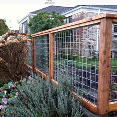 A little custom framed hog panel fence. Wood Working Projects Carpentry Furniture DIY Hand Power Tools How To Ideas Crafts Signs Wire And Wood Fence, Hog Wire Fence, Chicken Wire Fence, Wood Pallet Fence, Redwood Fence, Diy Garden Fence, Backyard Fences, Backyard Projects, Backyard Landscaping