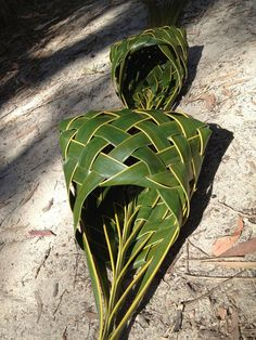 Posts about Coconut palm weaving written by rosalindentree Flax Weaving, Willow Weaving, Basket Weaving, Palm Frond Art, Palm Fronds, Leave Art, Flax Flowers, Coconut Leaves, Leaf Crafts