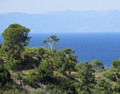 nice Odyssey by means of Bike & Boat Throughout The Greek Isles: Spetses & Hydra