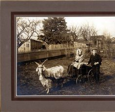 Boy and Girl with Goat Cart :: Clark County Historical Museum Photograph Collection