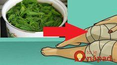 Zázrak na boľavé kolená, ktorý máte na jar úplne zadarmo: Nezabudnite si natrhať smrekové výhonky, tento účinok je ohromný! Seaweed Salad, Ethnic Recipes, Syrup, Alcohol