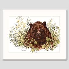 "Grizzly Bear Art w/Mat (Animal Wall Decor, Country Cabin Artwork) ""Spring Foraging"" -- Vintage Matted Print. Vintage Grizzly Bear Art Print w/Mat , Wildlife Wall Decor, Animal Artwork --Unframed Matted Print One in a beautiful series of 30 woodland animal and bird illustrations for home, office or nursery One ""Grizzly Bear, Spring"" vintage, mint-condition James Lockhart print (attached to a new, off-white mat) Finely detailed 1970s artwork: A grizzly bear forages for berries Published 35..."