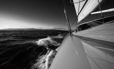 Black and white on the water | by JEFF BROWN