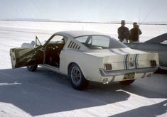 Alex Tremulis and Carroll Shelby both had an unbridled passion for automotive performance. Ford Mustang History, Ford Mustang 1964, Ford Mustang Shelby Cobra, Ford Shelby, Mustang Fastback, Mustang Cars, Ford Gt, Pontiac Gto, Chevrolet Camaro