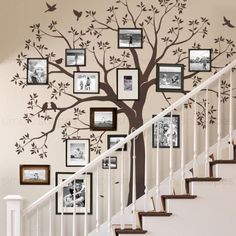 Family Tree Decal, Family Wall Decor, Tree Wall Murals, Tree Decals, Family Tree Photo, Family Photos, Family Picture Walls, Family Tree Picture Frames, Family Room Walls