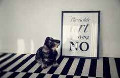 The noble art of saying no.