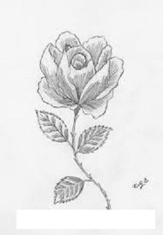 imagenes de como dibujar una rosa  Buscar con Google