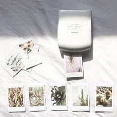 Love my Fujifilm Instax Share Printer Photo Polaroid, Polaroid Pictures, Polaroid Wall, Instax Mini 8 Camera, Fujifilm Instax Mini, Dslr Photography Tips, Photography Equipment, Canon Camera Models, Camera Gear