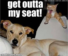 Get outta my seat!