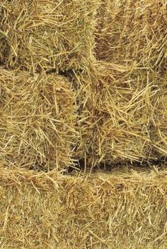 The Disadvantages of Straw Bale Construction