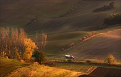 Фотограф Влад Соколовский (Vlad Sokolovsky) - Битва за урожай #1677225. 35PHOTO