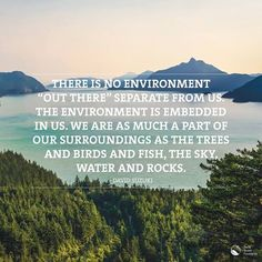 Image result for david suzuki quotes for the night