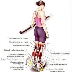 как похудеть в ногах не накачивая мышцы2