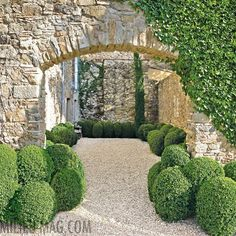 Advice on everything gardening Formal Gardens, Small Gardens, Garden Pool, Garden Paths, Landscape Design, Garden Design, Spanish House, Garden Features, Garden Structures