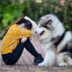 Como siempre hay algo con quien puedas confiar, Decir cosas , Hablar y más . Yo amo a mi perro  y tú tienes uno y lo quieres