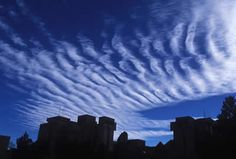 This is an image of cirrocumulus clouds. Sometimes cirrocumulus clouds are made up of groups of small, rounded puffs (like the clouds in this image), and sometimes they appear in long, parallel bands.  ( Courtesy of UCAR Digital Image Library)