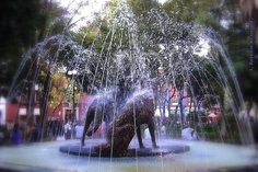 Fuente de los Coyotes, Coyoacan, Mexico DF  I loved sitting in the square watching this fountain with its Coyotes!