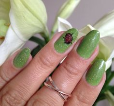 Nails of the week: bright green with ladybird